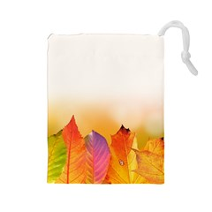 Autumn Leaves Colorful Fall Foliage Drawstring Pouches (large)  by BangZart