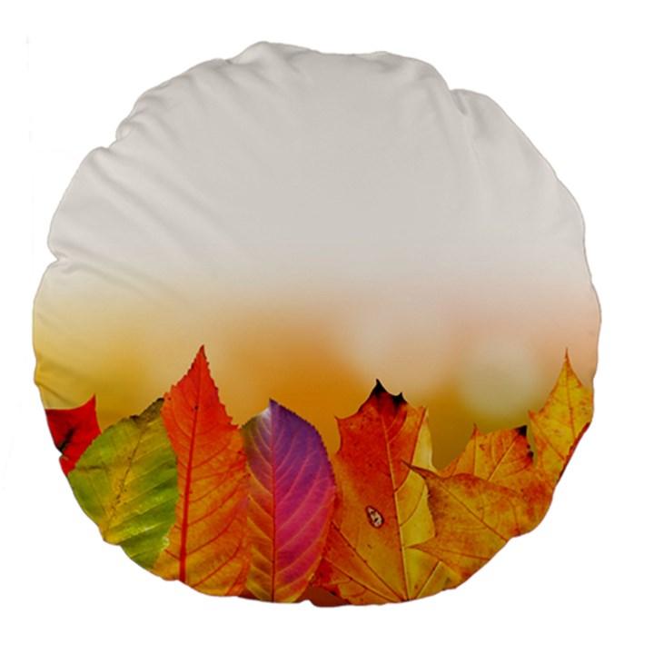 Autumn Leaves Colorful Fall Foliage Large 18  Premium Flano Round Cushions