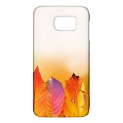 Autumn Leaves Colorful Fall Foliage Galaxy S6 by BangZart