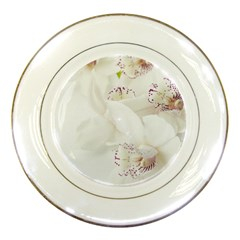 Orchids Flowers White Background Porcelain Plates by BangZart