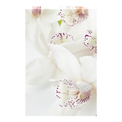 Orchids Flowers White Background Shower Curtain 48  X 72  (small)