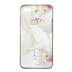 Orchids Flowers White Background Apple Iphone 4/4s Seamless Case (black) by BangZart
