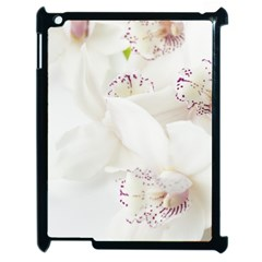 Orchids Flowers White Background Apple Ipad 2 Case (black) by BangZart