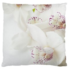 Orchids Flowers White Background Large Cushion Case (one Side) by BangZart