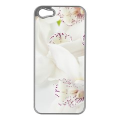 Orchids Flowers White Background Apple Iphone 5 Case (silver)