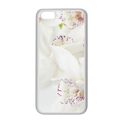 Orchids Flowers White Background Apple Iphone 5c Seamless Case (white) by BangZart