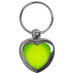 Radial Green Crystals Crystallize Key Chains (heart)  by BangZart