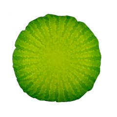 Radial Green Crystals Crystallize Standard 15  Premium Flano Round Cushions by BangZart