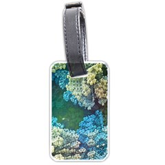 Fractal Formula Abstract Backdrop Luggage Tags (one Side)