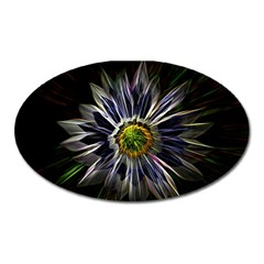 Flower Structure Photo Montage Oval Magnet by BangZart