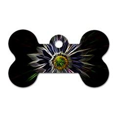 Flower Structure Photo Montage Dog Tag Bone (one Side) by BangZart
