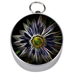 Flower Structure Photo Montage Silver Compasses by BangZart