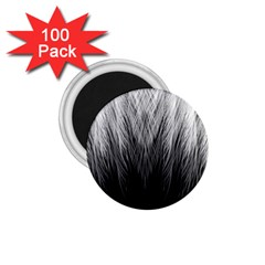 Feather Graphic Design Background 1 75  Magnets (100 Pack)