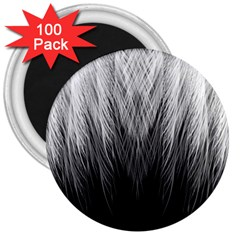 Feather Graphic Design Background 3  Magnets (100 Pack)
