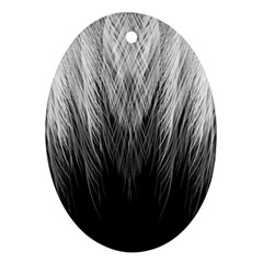 Feather Graphic Design Background Oval Ornament (two Sides) by BangZart
