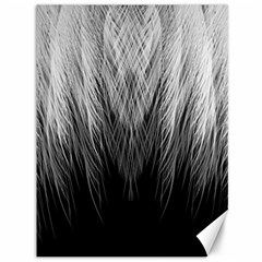 Feather Graphic Design Background Canvas 36  X 48