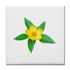 Yellow Flower With Leaves Photo Face Towel by dflcprints
