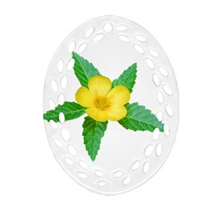 Yellow Flower With Leaves Photo Ornament (oval Filigree) by dflcprints