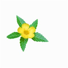 Yellow Flower With Leaves Photo Large Garden Flag (two Sides) by dflcprints