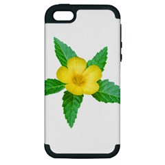 Yellow Flower With Leaves Photo Apple Iphone 5 Hardshell Case (pc+silicone) by dflcprints