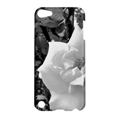 White Rose Black Back Ground Greenery ! Apple Ipod Touch 5 Hardshell Case by CreatedByMeVictoriaB