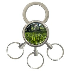 Green Grass Field 3 Ring Key Chains