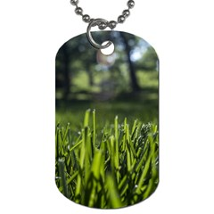 Green Grass Field Dog Tag (one Side)