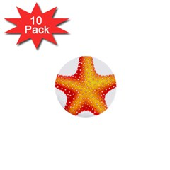 Starfish 1  Mini Buttons (10 Pack)