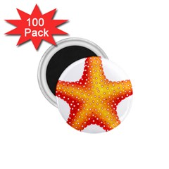 Starfish 1 75  Magnets (100 Pack)  by BangZart