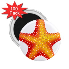 Starfish 2 25  Magnets (100 Pack)  by BangZart