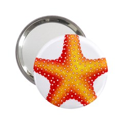 Starfish 2 25  Handbag Mirrors by BangZart