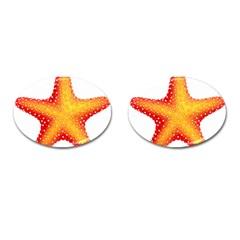 Starfish Cufflinks (oval) by BangZart