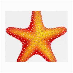 Starfish Small Glasses Cloth (2 Side)