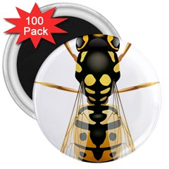 Wasp 3  Magnets (100 Pack) by BangZart