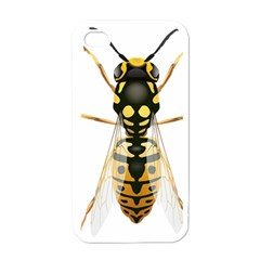 Wasp Apple Iphone 4 Case (white) by BangZart
