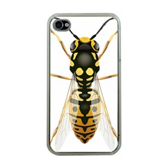 Wasp Apple Iphone 4 Case (clear)