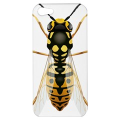 Wasp Apple Iphone 5 Hardshell Case by BangZart