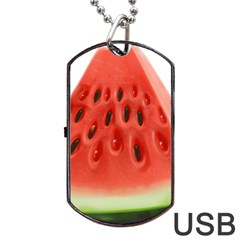 Piece Of Watermelon Dog Tag Usb Flash (one Side) by BangZart