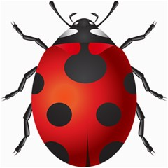 Ladybug Insects Canvas 16  X 16