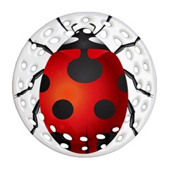 Ladybug Insects Ornament (round Filigree) by BangZart