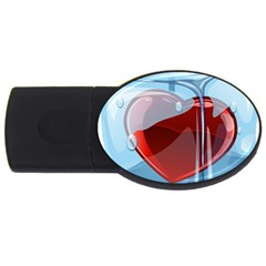 Heart In Ice Cube Usb Flash Drive Oval (4 Gb)