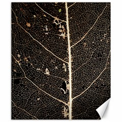 Vein Skeleton Of Leaf Canvas 20  X 24