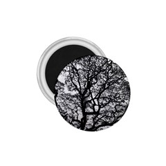 Tree Fractal 1 75  Magnets by BangZart
