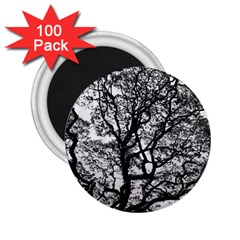Tree Fractal 2 25  Magnets (100 Pack)  by BangZart