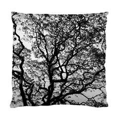 Tree Fractal Standard Cushion Case (two Sides) by BangZart