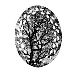 Tree Fractal Oval Filigree Ornament (two Sides) by BangZart