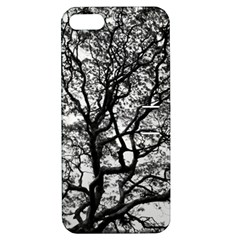 Tree Fractal Apple Iphone 5 Hardshell Case With Stand by BangZart