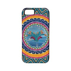 Traditional Pakistani Art Apple Iphone 5 Classic Hardshell Case (pc+silicone)