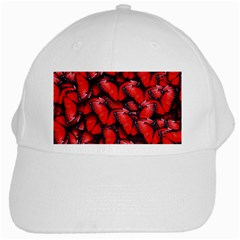 The Red Butterflies Sticking Together In The Nature White Cap by BangZart