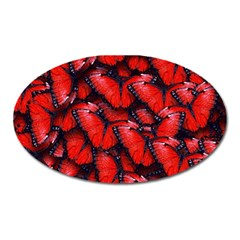 The Red Butterflies Sticking Together In The Nature Oval Magnet by BangZart